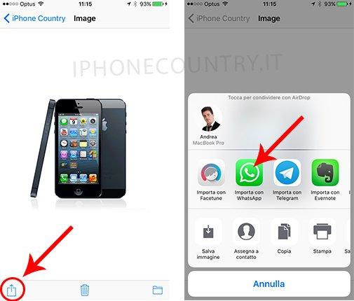 Importare con WhatsApp le GIF