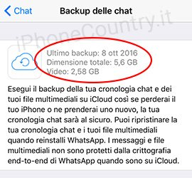 Dati Backup WhatsApp