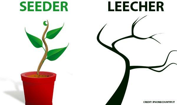 Seeder e Leecher differenza